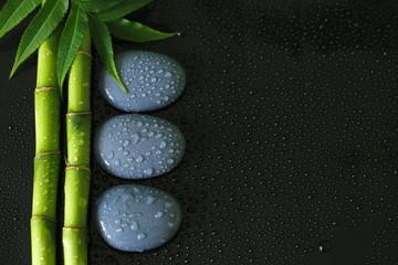 Naklejkaarrière plan noir avec branche de Bambou avec du feuillage sur la gauche et galets zen gris avec gouttes d'eau