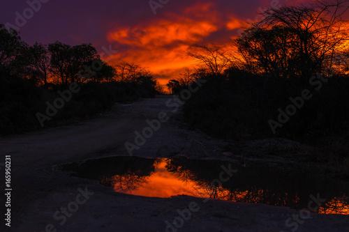 Fotobehang Rood reflejo rojizo del sol en un charco de agua sobre camino rural