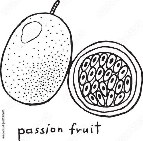 Passion fruit coloring page. Graphic vector black and white ...