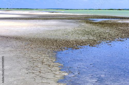 Landscape of Salt Area in Rio Lagartos Poster