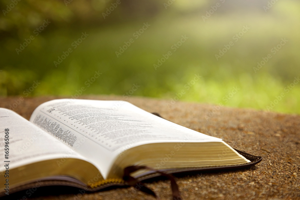 Fototapety, obrazy: An Opened Bible on a Table in a Green Garden