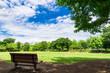 夏の青空と木陰のベンチ