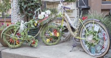 Two Beautifully Decorated Bikes