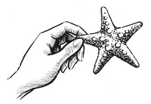 Hand Holding A Starfish