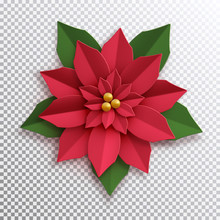 Christmas Star. Paper Poinsett...