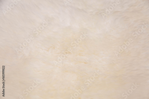 Acrylic Prints Stones in Sand white wool texture material of carpet.