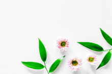 Little Pink Flowers On White Background Top View Copyspace