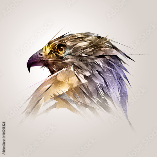 painted color head of the bird hawk Canvas Print