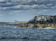 The Farne Islands In Northumbr...