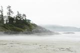 House on the cliff above beach in fog - 166046224
