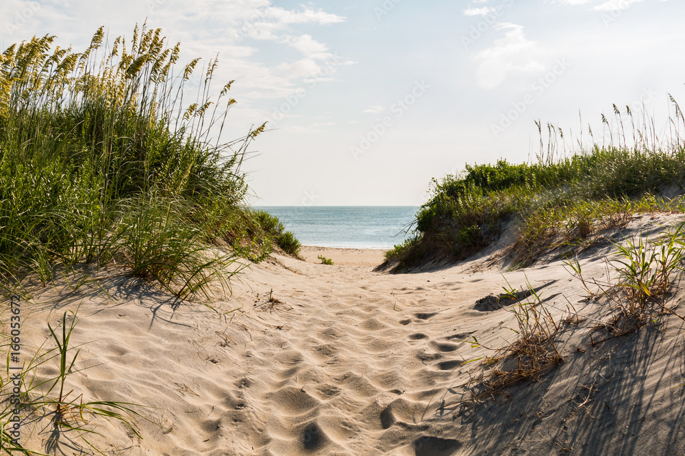 Fototapety, obrazy: Sandy pathway to Coquina Beach on the Outer Banks in North Carolina at Cape Hatteras National Seashore.
