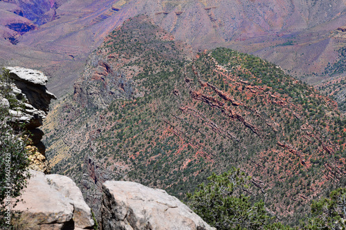 Foto op Canvas Lavendel Grand Canyon View