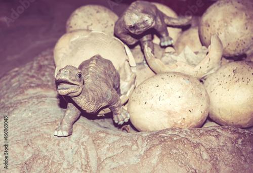 Fotografering  dinosaur sculpture, huge animal model for learn