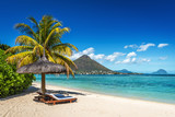 Fototapeta See - Loungers and umbrella on tropical beach in Mauritius