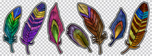Color Feathers Embroidery Element Collection, Fashionable Template For Design Of Clothes, T-shirt Design. Beautiful Feathers Of Tropical Birds, Classic Embroidery Art Vector
