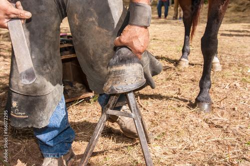 Fotografie, Obraz  maniscalco operazioni di ferratura del cavallo