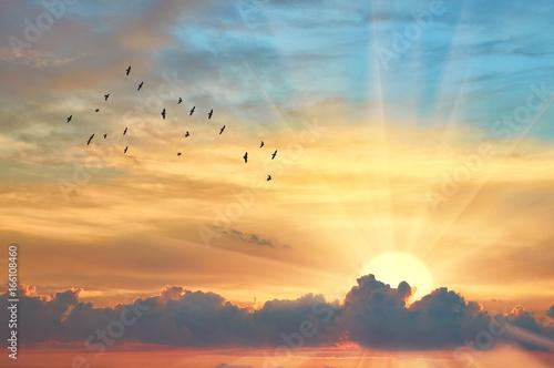 Obraz Chmura wieczornego nieba o zachodzie słońca - fototapety do salonu