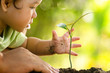 Leinwanddruck Bild - Close up Kid hand and father planting young tree