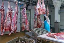 Cutting Meat Slaughterhouse Wo...