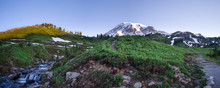 Mt. Rainier Panorama At Sunris...