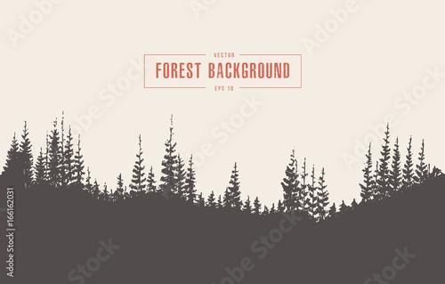 Sosnowego lasu wektorowa ilustracyjna ręka rysująca, nakreślenie