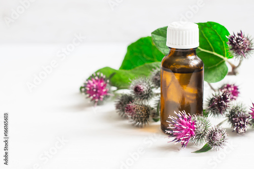 Agrimony burdock Essential oil In small bottle Canvas Print