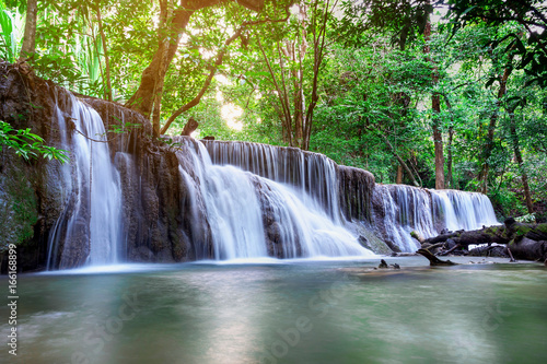 Papiers peints Cascades Beautiful waterfall landscape in Thailand
