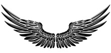 Eagle Bird Or Angel Wings