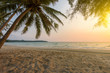 Sunset sky over tropical sea with beautiful beach and coconut tree