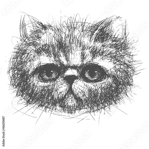 Recess Fitting Hand drawn Sketch of animals persian cat