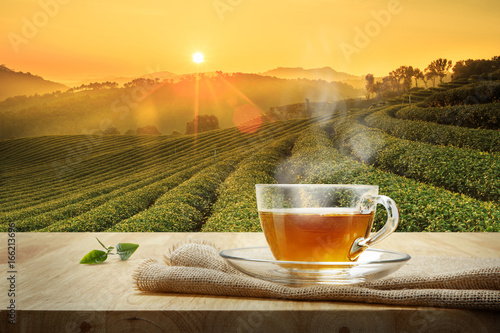 Cup of hot tea and tea leaf on the wooden table and the tea plantations backgrou Fototapete