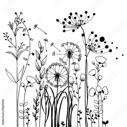 Kwiaty i trawa na białej kolekcji. Zestaw ilustracji rustykalne kolorowe łąki wzrostu.