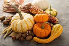 Fall Still Life With Pumpkins And Corn