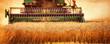 Leinwanddruck Bild - Harvesting Wheat