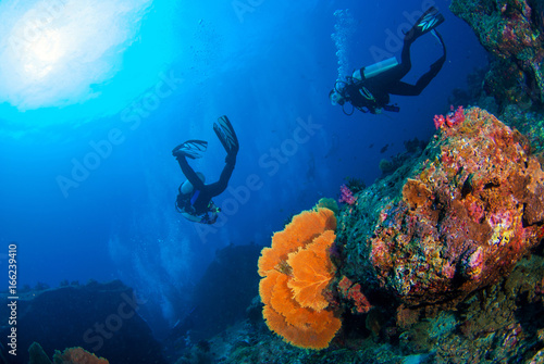 Fotografie, Obraz  Wonderful underwater world with scuba divers on coral reef and a big colourful sea fan in South Andaman, Thailand, Scuba diving Underwater seascape concept