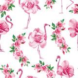 flamingo róża białe tło - 166239864