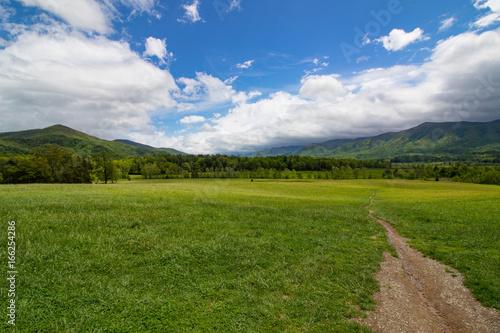 Fotografie, Obraz  Smoky Mountain Scene2