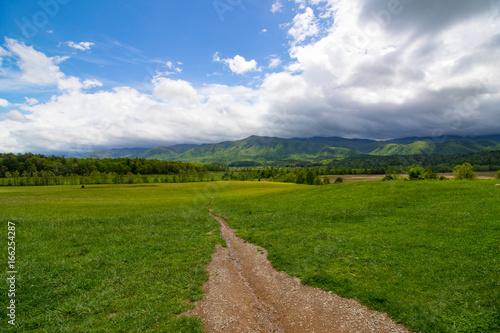 Fotografie, Obraz  Smoky Mountain Scene1