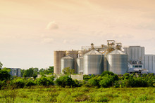 Silo Structure For Storing Bulk Dried Seed Factory For Keep Inventory