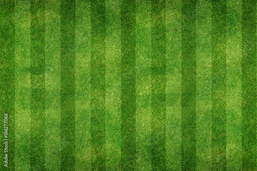 Foto auf Leinwand Gras green grass line background