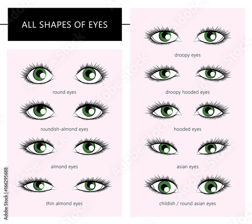 shapes of eyes buy this stock vector and explore similar vectors