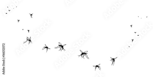 A flock of flying mosquitoes. Silhouette, graphic image. Vector, isolated on white background