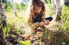 Happy Child Girl Picking Wild ...