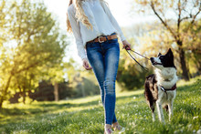 Beautiful Woman And Dog Enjoying Their Time In Nature