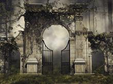 Gotycka Brama Z Bluszczem W Ciemnym Lesie