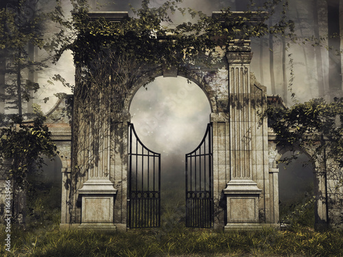 Gotycka brama z bluszczem w ciemnym lesie Wallpaper Mural