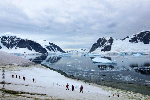 Fotografie, Obraz  Group of hikers with gentoo penguins around, Antarctic Peninsula, Antarctica