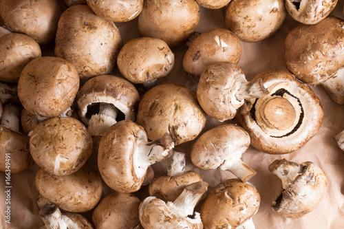 close up of brown mushrooms Fototapet
