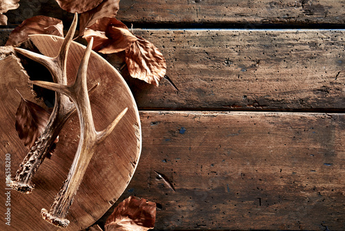 Poster Chasse Deer antlers with leaves on wooden board