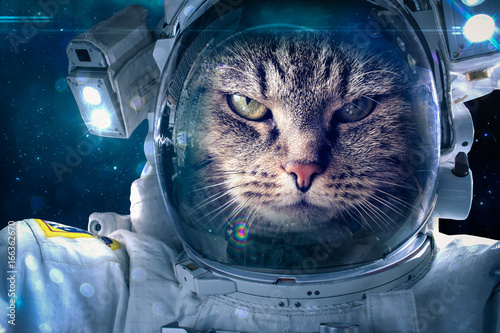 Tuinposter UFO Cat in space